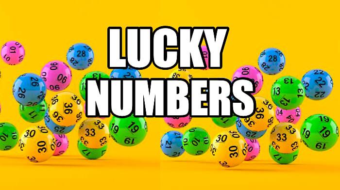 همه چیز در مورد اعداد شانس